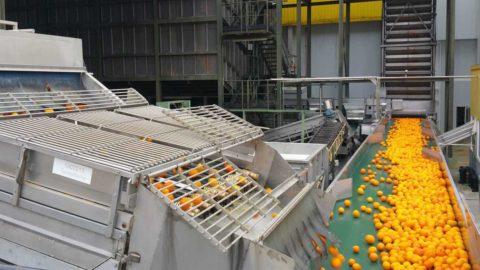 Tratamiento de efluentes en la producción de zumos