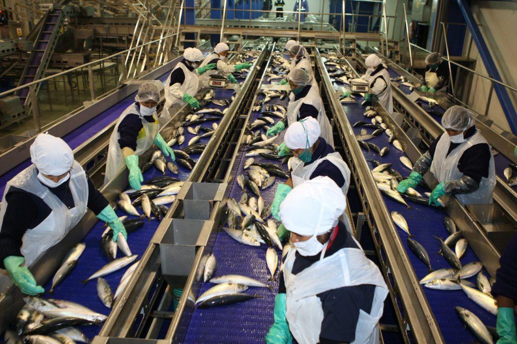 Tratamiento de aguas residuales en la industria pesquera