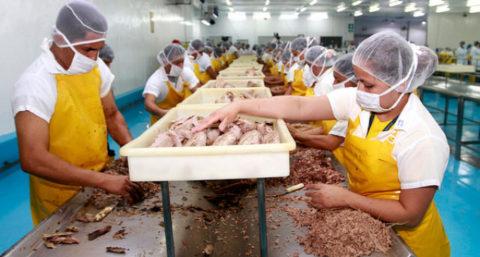 Vertido cero en la industria del cocido de mariscos
